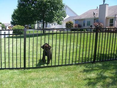 AFS-Commercial-Aluminum-Fences-1.jpg