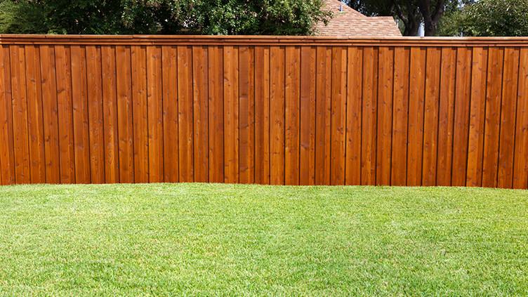 Fence-Staining-2.jpg