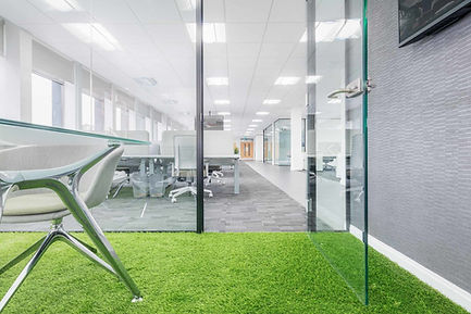 astro+turf+in+the+office.jpg