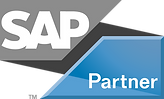 sap_partner_R_n.png