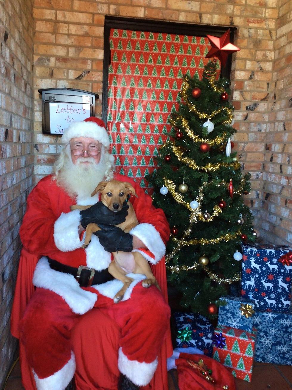 Santa with furry friend Penny