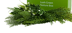 LUSH GREEN.png