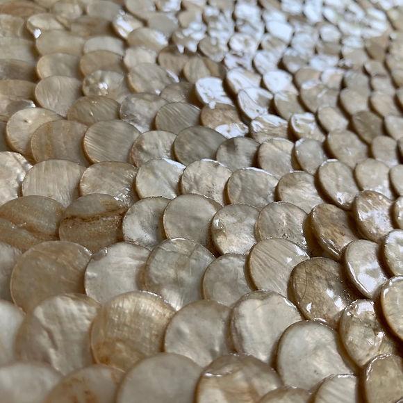 natural-shells.jpg