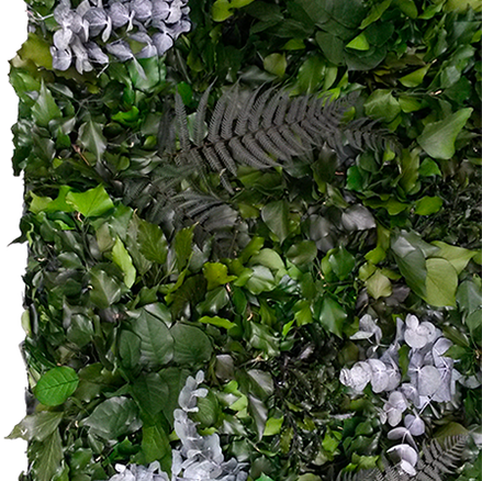 STABILIZED PLANTS