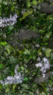 MEDITERRANEO PLANT PANEL