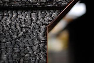 burned wood.jpg