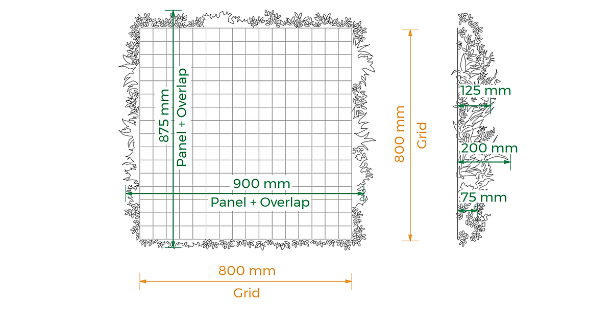 green wall dimensions.png