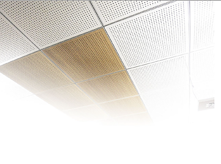 ACOUSTIC BASIC CEILING.png