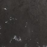 VEINS BLACK & WHITE