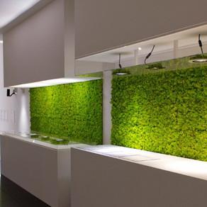 Moss Panels Ideas