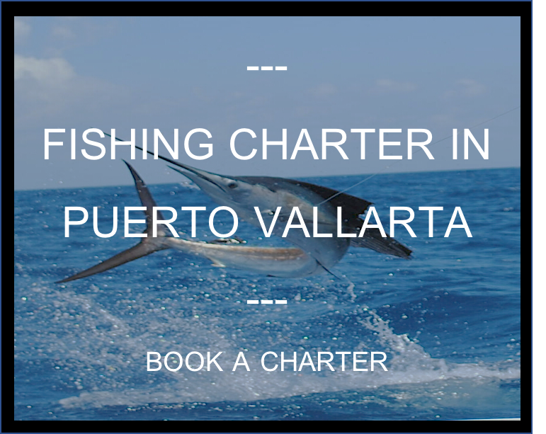 Book a Fishing Charter in Puerto Vallarta. Big Game, Snorkelling and Whale Watching Charter Boat. Martins Fishing Adventures.