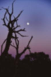 Behind The Sun | Sunset Photography | Canyonlands National Park, Utah, United States