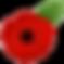 kissclipart-poppy-clipart-remembrance-po