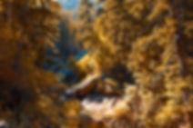Boulder Sunrise 3:2.jpg