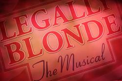 Legally Blonde Scrim
