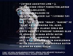 neurorehabilation_Kopyası_Kopyası_Kopyas