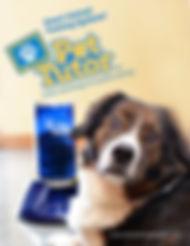 Pet Tutor Branding & Device