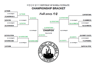 Fall 2019 - Championship Bracket.png