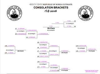 Fall 2018 - Consolation Bracket.png