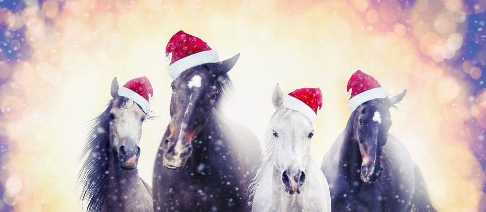 Christmas horses with Santa hat on snow