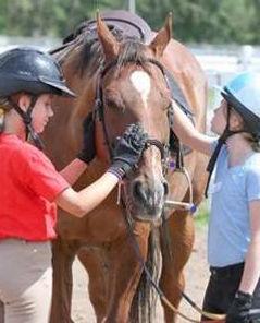 girls pet horse.jpg