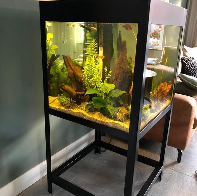 Vis Aquarium