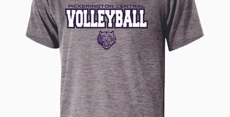 Tiger Volleyball Grey Simple Shortsleeve Dri Fit