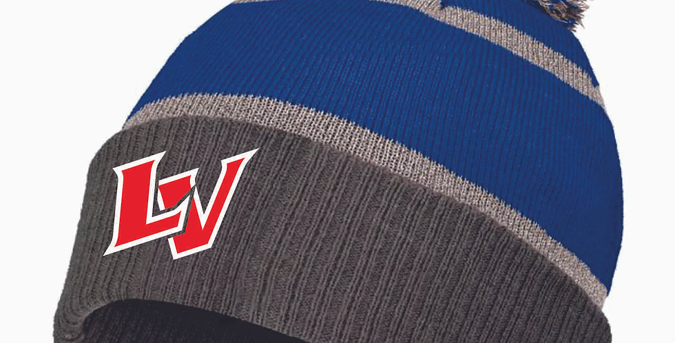 Panthers Reflective Beanie