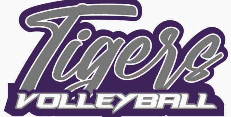 Tiger Volleyball Window Decal