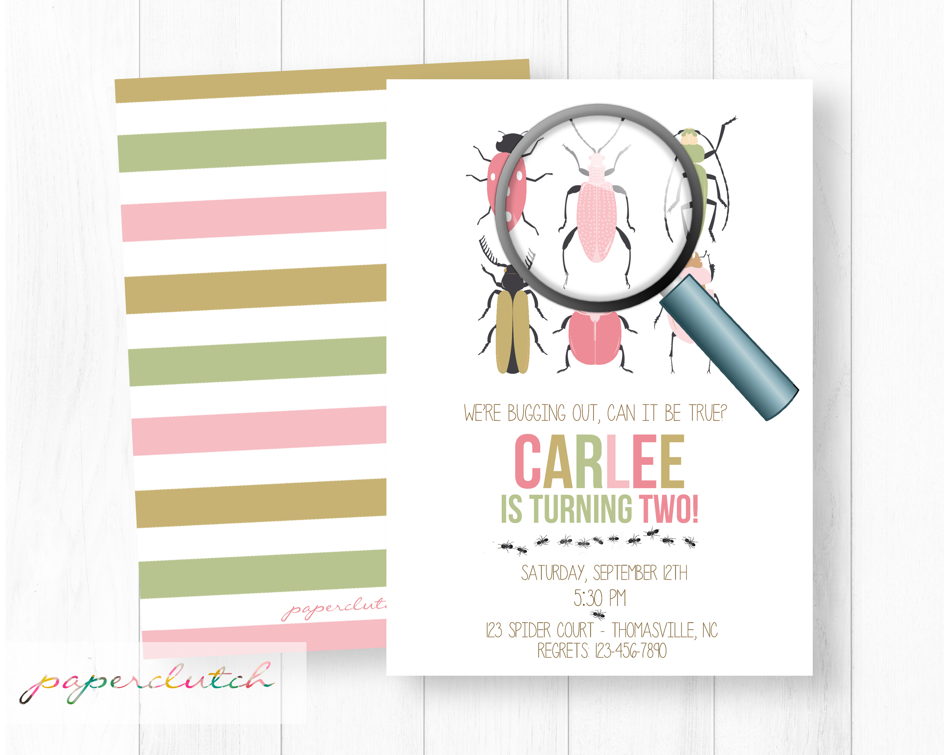 Girl Bug Birthday Party Invitation