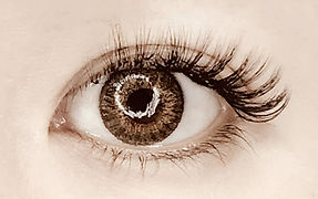 輕羽量睫毛0.07mm60束開眼