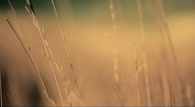 Screen Shot 2021-08-25 at 10.11.40 am.png