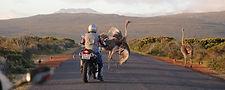 Africa Tour Pic 1.jpg