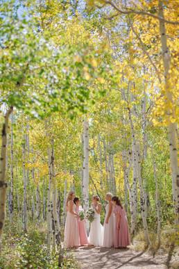 Renee&Jason_Wedding-223.jpg