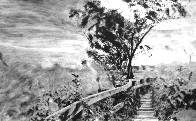 Gérard Lucian Ricard - Le chemin des Âmes