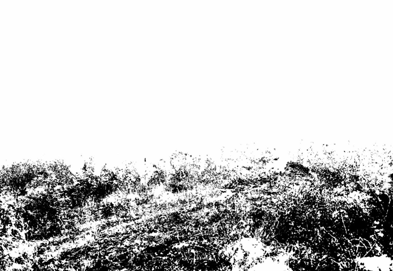 Gérard Lucian Ricard - L'Enterrement dans les Blés