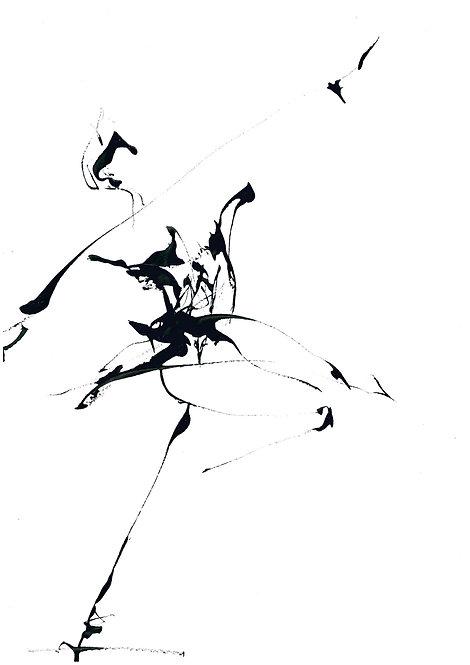 Danse 66B - Patrice Palacio