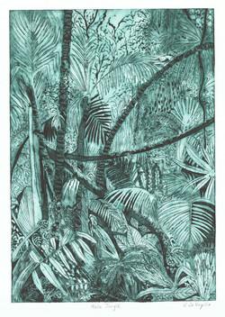 Mulu Jungle