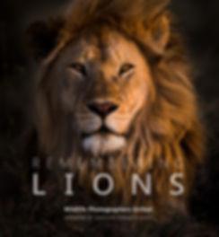 Remembering Lions Jacket.jpg