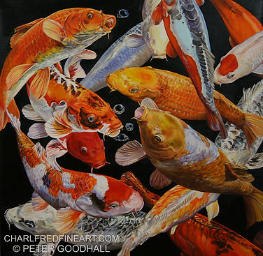 Peter Goodhall _KOI ANTICIPATION VIII.jp