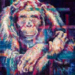 Chimpanzee-gaze.jpg