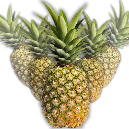 MR PINEAPPLES (34 oz)