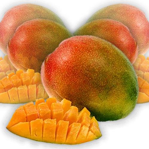 Mango Infusion (16 oz)