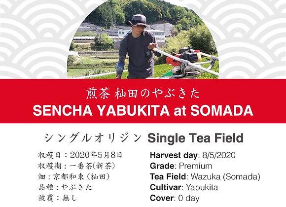 2020 Sencha First Flush: Yabukita - Somada