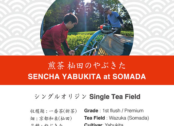 Sencha: Yabukita Somada 2019 First Flush