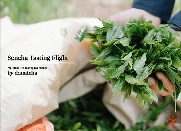 Online Tea Tasting Guide (5 Varieties of Sencha)