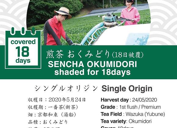 2020 Sencha First Flush: Sencha Okumidori (Shaded for 18 days)