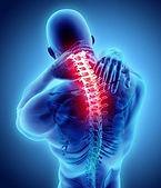 脊椎損傷.jpg