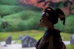 日本の色 JAPAN COLORS 2016