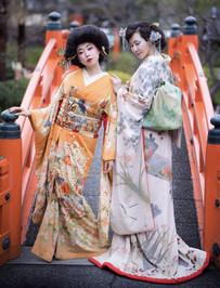 YUYA Collection